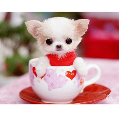 Cute Dog In The Cup 5D DIY Paint By Diamond Kit
