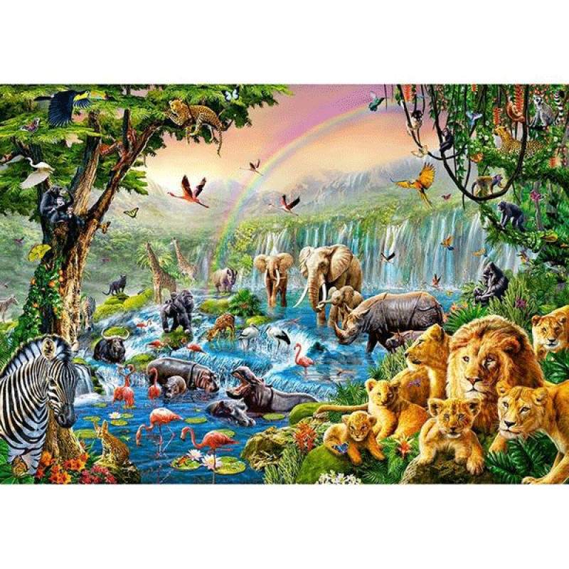Animal World in the ...