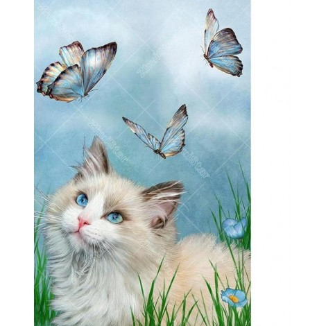 Cat & Butterflies 5D DIY Paint By Diamond Kit