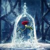 Red Rose In Glass 5D DIY Paint By Diamond Kit